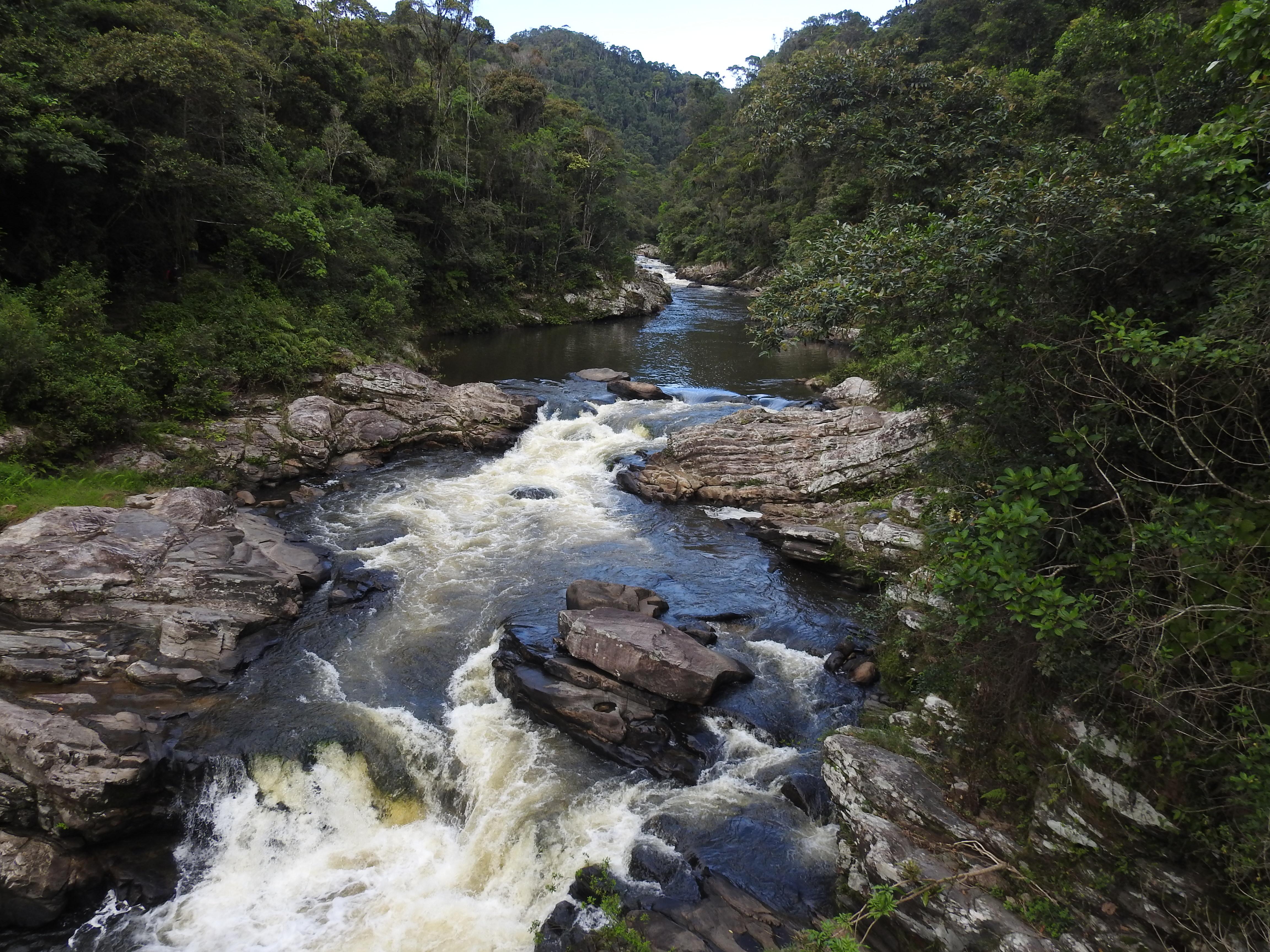 Ranomafana Nationalpark Wasserfall im Regenwald
