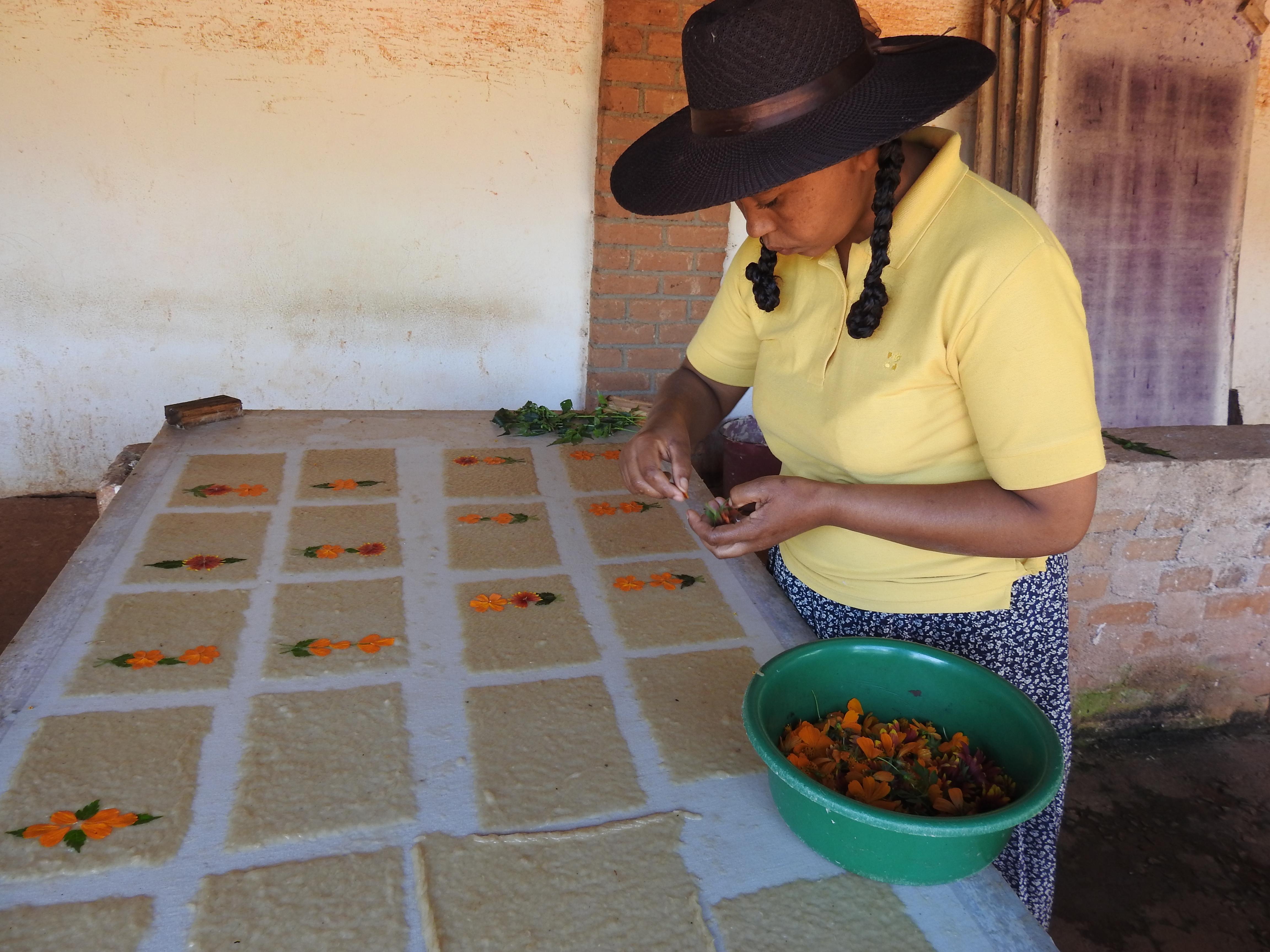 traditionelle Fertigung des Antaimoro Papiers in Ambalavao